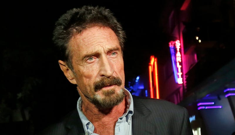 Illustration for article titled John McAfee Is Starting a New Political Party For His Presidential Run