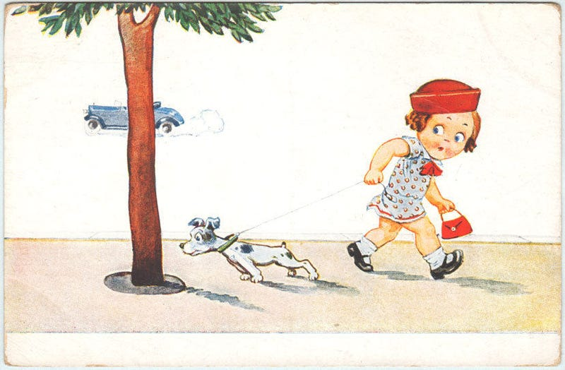 Illustration for article titled 5 Ways To Make Your Dog's Walks More Fun