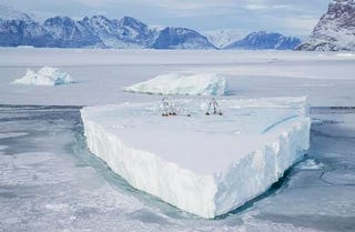 Illustration for article titled Statue built on a glacier spotted drifting through the Arctic ocean