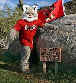 Illustration for article titled Arizona Dismisses Confused, Drunk Mascot