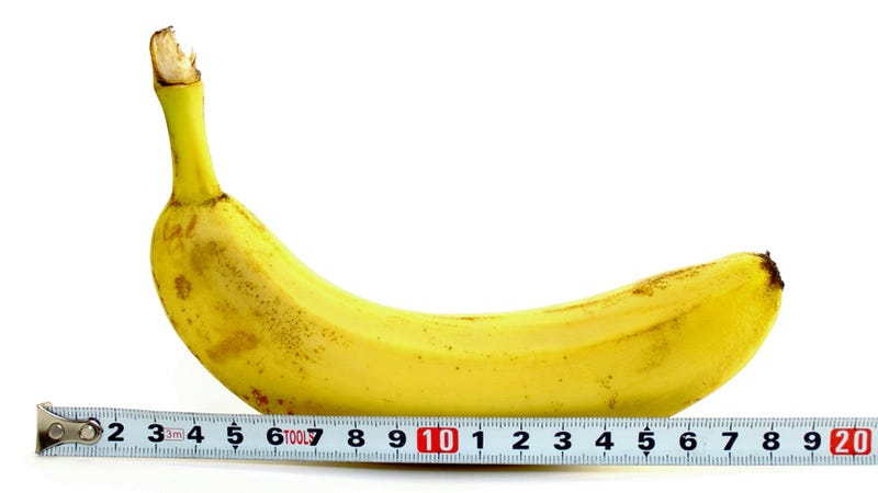 Illustration for article titled Penis Size Does Matter, According to Study