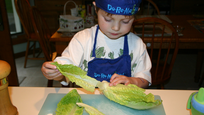 Illustration for article titled Skip the Special Plastic Knives and Just Tear Lettuce to Prevent Browning