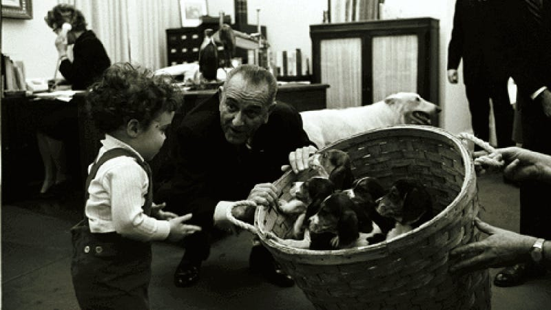 Illustration for article titled Did You Say You Needed a Photo of LBJ with Puppies?