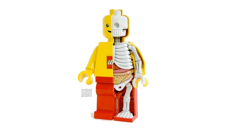 Illustration for article titled You'll Never Look at a Lego Man the Same After Seeing His Open Guts