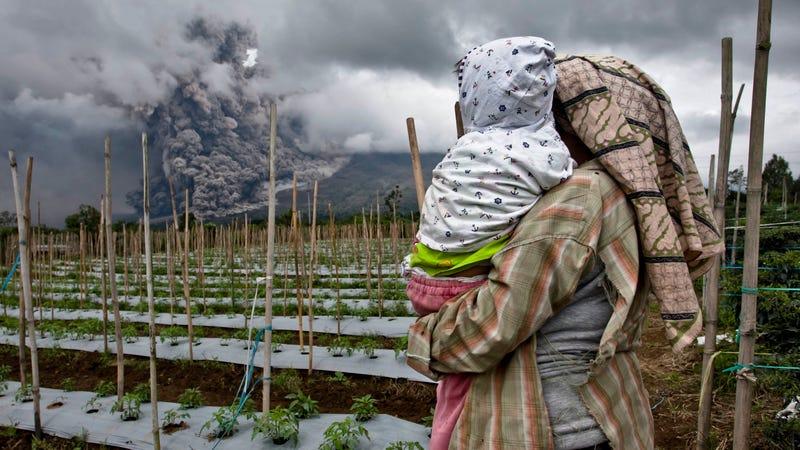Illustration for article titled Azért örülök, hogy nem ma kell paradicsomot szednem Indonéziában
