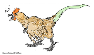 Illustration for article titled The Chickensaurus Is  Distilled Nightmare-Fuel