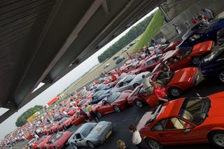 Illustration for article titled Too Many Ferraris Crowd Silverstone, Guinness Notes Record