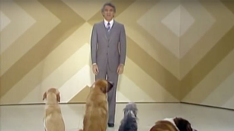 Illustration for article titled In 1976, Steve Martin performed stand-up for an audience of dogs