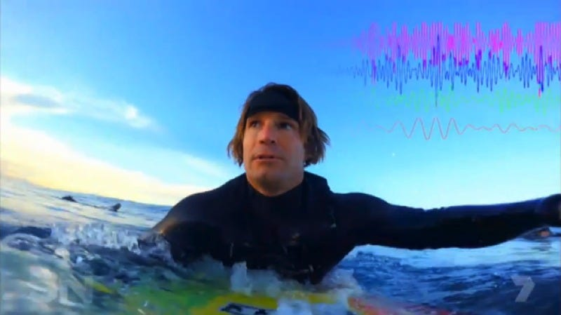 Surf therapy: This is Australian reporter Denham Hitchcock's brain on surfing. Credit: Neuroverse, Inc.