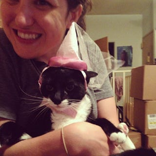 Illustration for article titled Nala does not appreciate her princess hat.