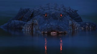 Illustration for article titled This Devilish Alligator Has Not Been Photoshopped