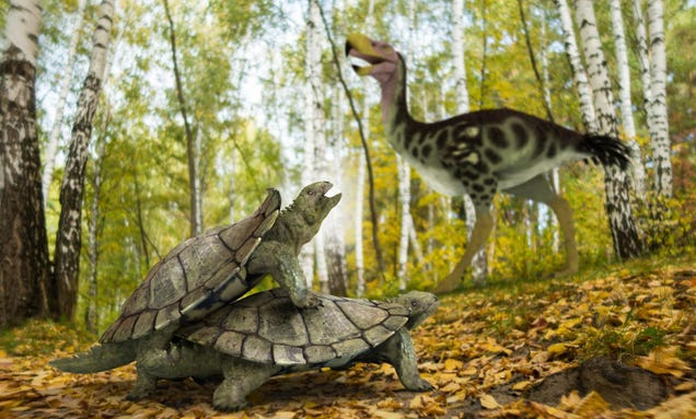 Bizarre' Land Turtle Somehow Survived Mass Extinction That Killed the Dinosaurs
