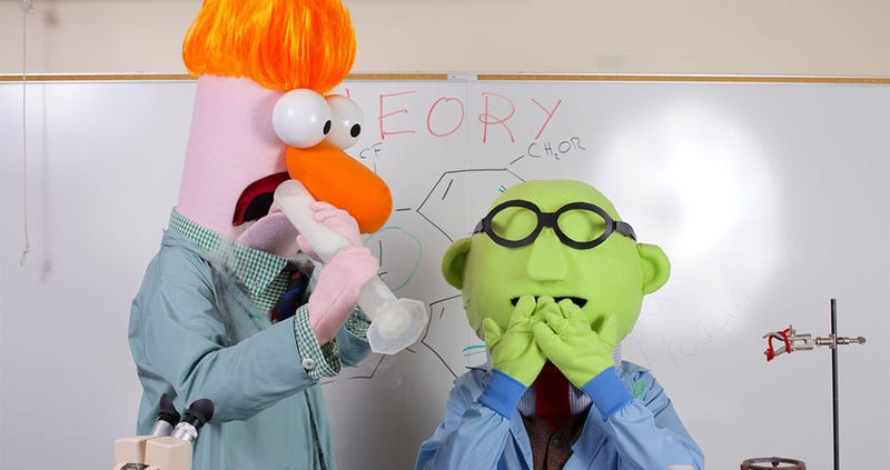 Illustration for article titled Meet The World Champions Of Muppet Cosplay