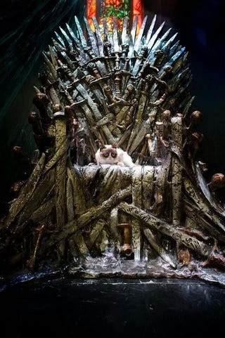 Illustration for article titled Grumpy Cat on the Iron Throne.