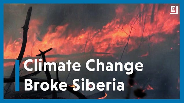Climate Change Made the Heat Wave Roasting Siberia 600 Times More Likely
