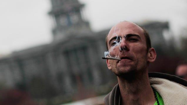 Colorado Temporarily Re-Bans Marijuana For Statewide Tolerance Break
