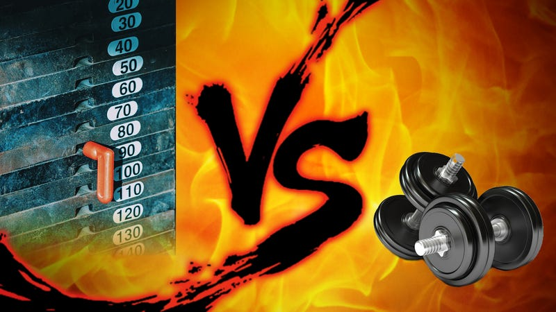 Gym Showdown: Free Weights vs  Machines