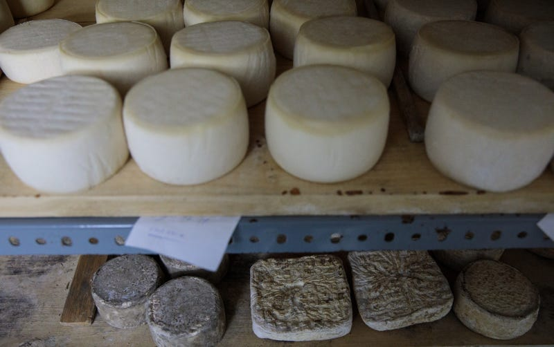 The Cheese Lady Grand Rapids offers cheese options amid new studies