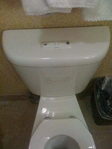 Convert Your Toilet To A Dual Flush With A Retrofit Kit