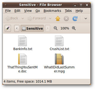 overwrite file in C# ?
