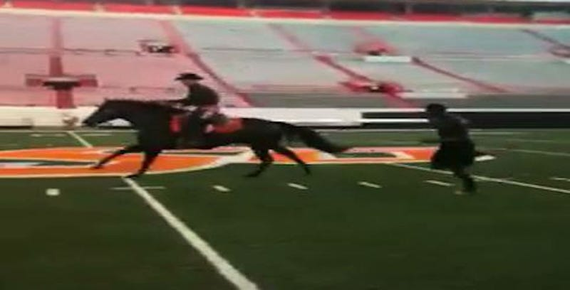 Illustration for article titled Here Are Videos Of Dez Bryant Racing A Horse In College
