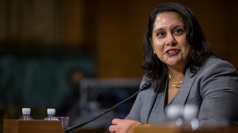 Illustration for article titled Kavanaugh Replacement Neomi Rao Regrets Writing That Gender Equality Was 'Dangerous Feminist Idealism'