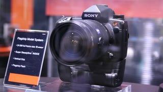 Illustration for article titled Sony's 25-Megapixel Full-Frame Sensor Lands in Massive Sony DSLR
