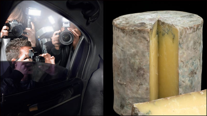 Illustration for article titled British museum displays cheese made from navel bacteria of celebrities