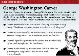 Illustration for article titled Black History Month: George Washington Carver