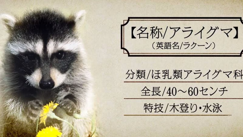 Illustration for article titled Japan's Guardians Of The Galaxy ads have way more raccoons and trees