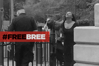 Illustration for article titled #FreeBree Indiegogo Update