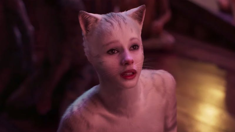 A shot from the upcoming humanimal film Cats.