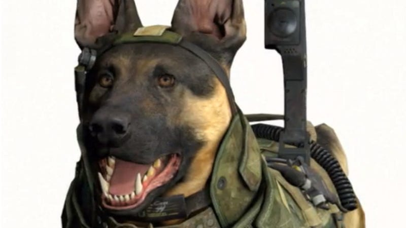 Illustration for article titled Even Infinity Ward Is Split on Killing Call of Duty Dog