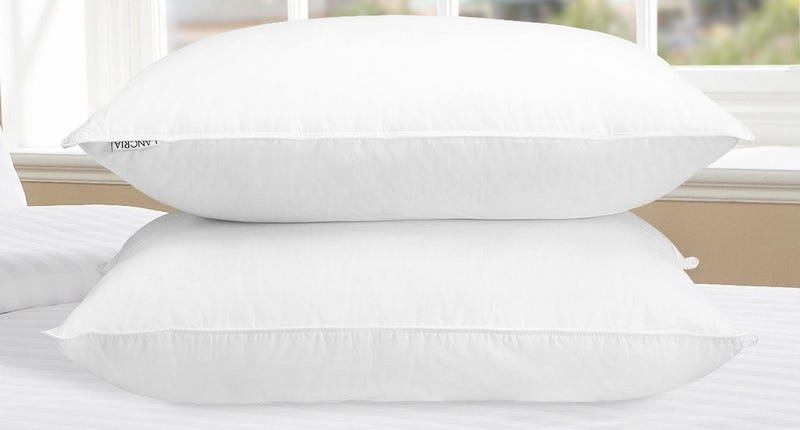 Langria Pillow 2-pack, $22 with code PRHMTDEZ