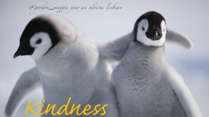Illustration for article titled Today In Jose Canseco Tweets As Motivational Posters: Kindness