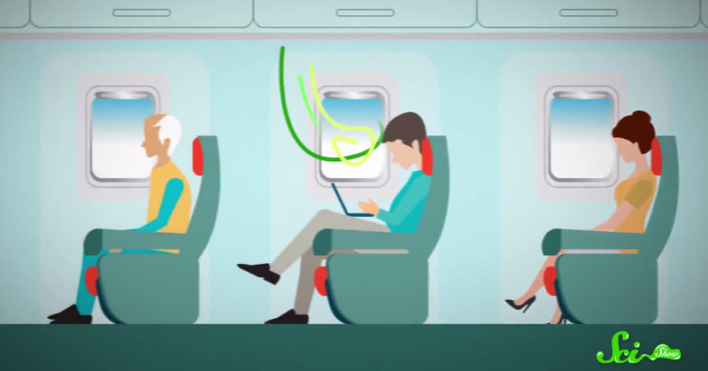 Illustration for article titled Airplanes Aren't As Gross As You Think