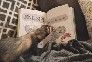 Illustration for article titled Wednesday Book Club - Lacking in Ferret Propaganda Edition