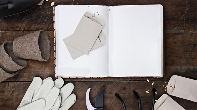 Keep a Garden Journal for Reference Throughout the Current and Future Growing Seasons