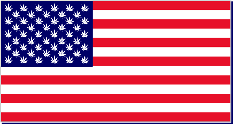Illustration for article titled Marijuana Legalization Could Keep Democrats In Control Of The Senate