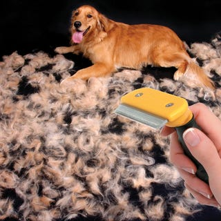 Illustration for article titled Pull Your Dog's Hair Out with the Pet Furminator