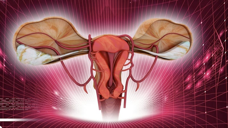 Illustration for article titled Swedish Doctors Carry-Out First Successful Mother-Daughter Uterus Transplant Twice, Just to Show Off