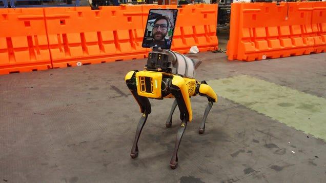 Telemedicine Doesn t Need Boston Dynamics  Nightmare Robot Dog