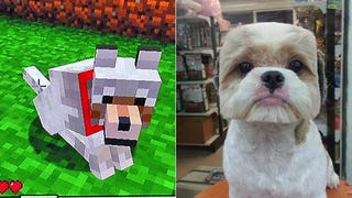 Illustration for article titled People, Don't Turn Your Dog into Real-Life Minecraft