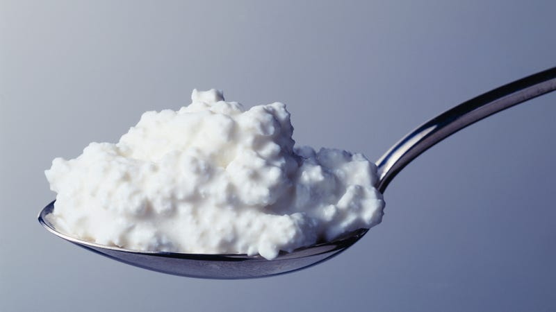 Illustration for article titled Point/Counterpoint: Is cottage cheese gross?