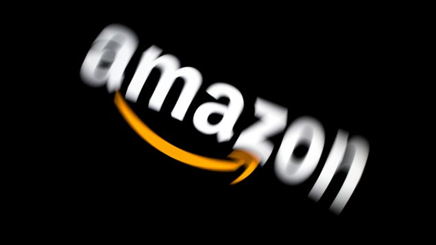 Ring Asked Reporters to Omit Ukraine Staff s Work on  Many Other Amazon Projects