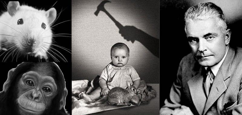 Illustration for article titled Little Albert: el salvaje experimento que logró que un bebé de 11 meses temiera a Santa Claus