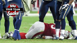 Why Your Team Sucks 2015: Arizona Cardinals