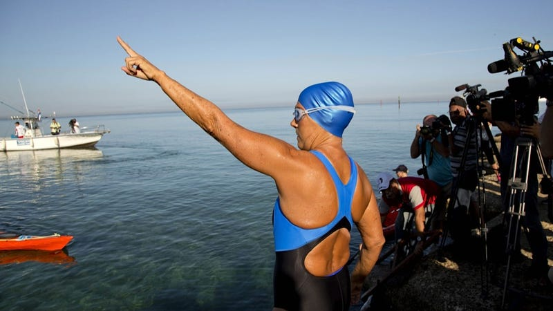 Illustration for article titled Diana Nyad's Latest Cuba-to-Florida Swim Is Going Well (So Far)