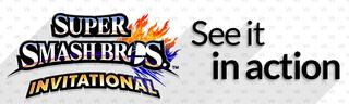 Illustration for article titled More Info on E3 Super Smash Bros Invitational