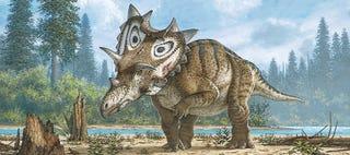 Reconstrucción artística del Spiclypeus shipporum. Museo Natural de Canadá
